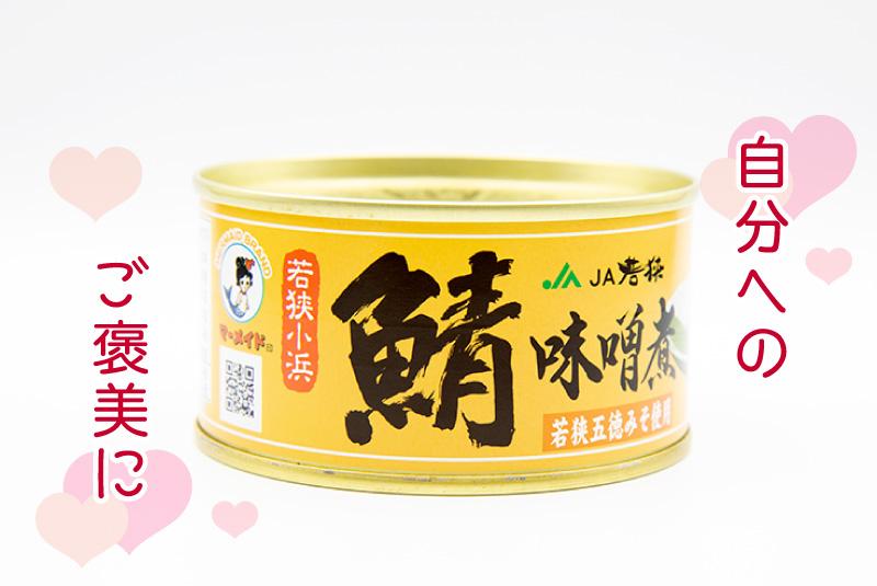 自分へのご褒美に 福井缶詰 鯖みそ煮の鯖缶