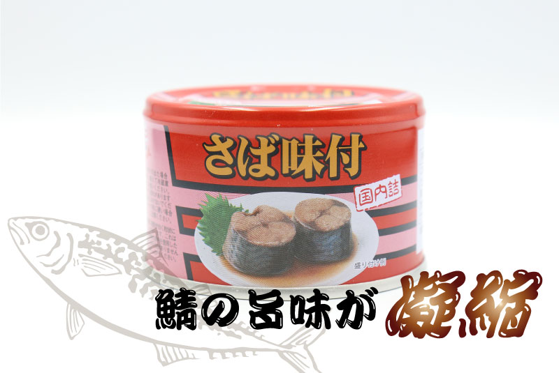 鯖の旨味が凝縮 キョクヨー さば味付 145gの鯖缶