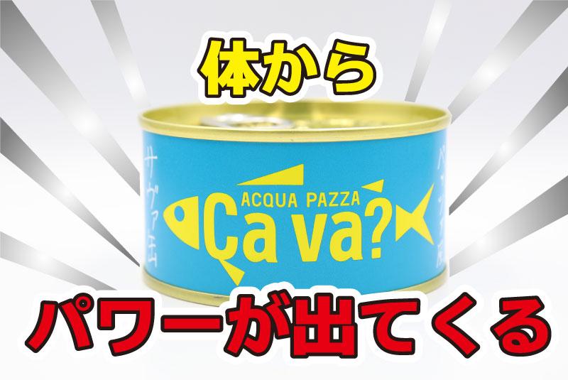 体からパワーが出てくる 岩手県産サヴァ アクアパッツァ風の鯖缶